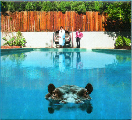 Front cover of 'Hippopotamus' by Sparks