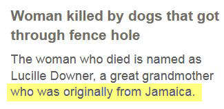 Screenshot from BBC News stating that the victim of a lethal dog attack in Rowley Regis 'was originally from Jamaica'