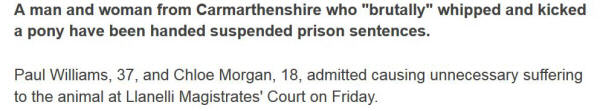 Screenshot of BBC news item: '...admitted causing unnecessary suffering to the animal at Llanelli Magistrates' Court...'